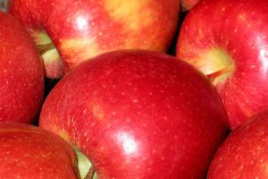 夢がひろがりんぐ-りんご